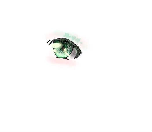 <em>眼睛</em>一只~