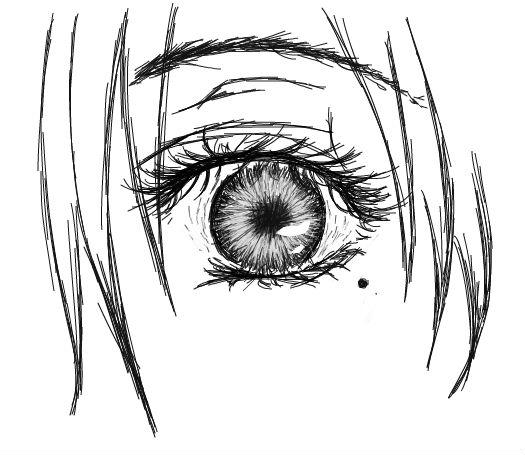 画丹凤眼睛的步骤图