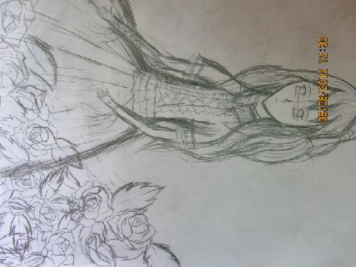 梨子也画了幅,不过是草稿.画得不好请见谅