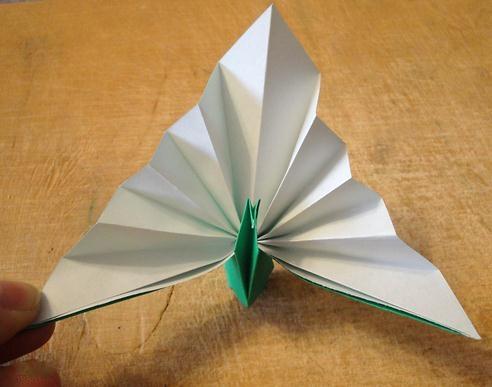 这个简单的手工折纸孔雀有趣的地方是