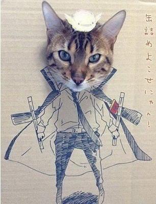 萌萌哒小猫手绘图