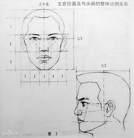 绘画中三庭五眼示范图模拟图  1、三庭从发际线到眉间连线;眉间到鼻翼下缘;鼻翼下缘到下巴尖,上中下恰好各占三分之一。2、五眼眼角外侧到同侧发际边缘,刚好一个眼睛的长度,两个眼睛之间呢,也是一个眼睛的长度,另一侧到发际边是一个眼睛长度。这是最基本的标准。3、眼头长的1/2处。4、口缝线鼻翼下缘到下巴尖1/3处。5、耳朵眉间到鼻翼下缘。6、眼距=鼻宽=1眼长。