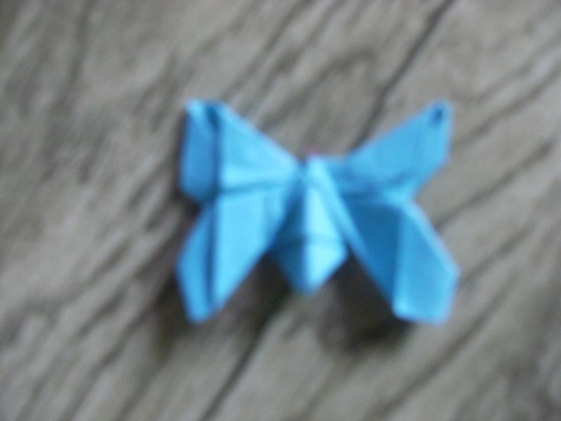 用纸折的小蝴蝶
