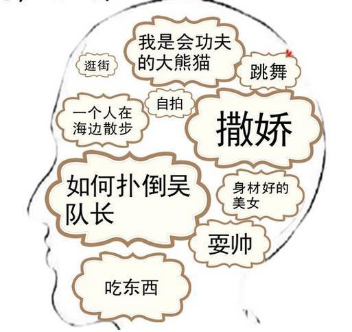 【月珞】exo|十二只大脑结构图