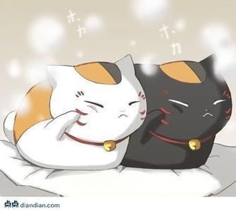 【云麓】猫咪老师的萌图