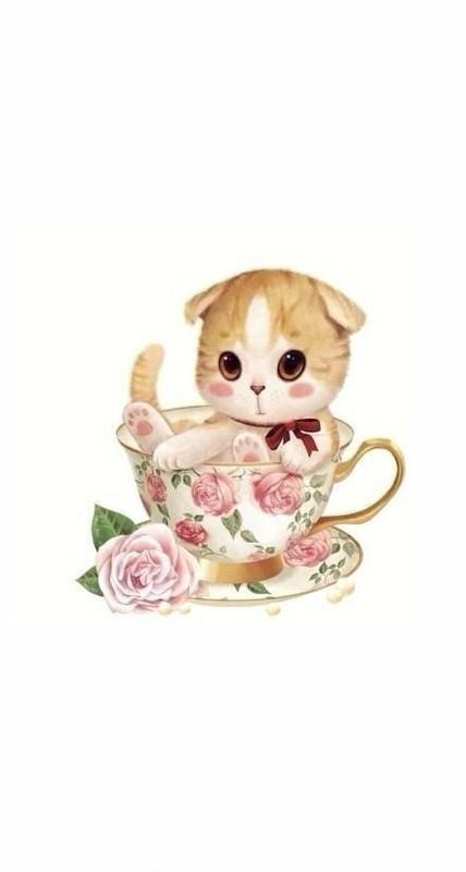 超软超q的猫咪手绘插画