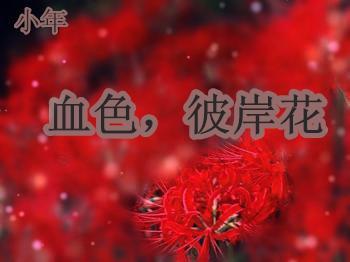 【小年】血色,彼岸花