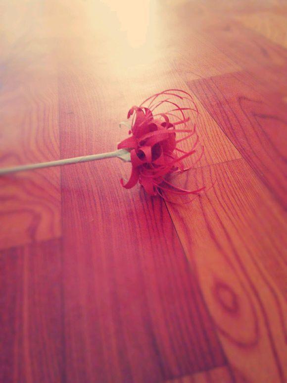 折纸曼珠沙华 花朵步骤
