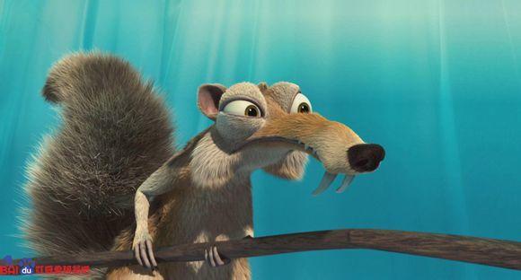 可爱萌物头像松鼠